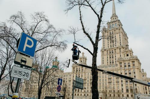 4.03.2020_Обрезка деревьев Кутузовский проспект_031