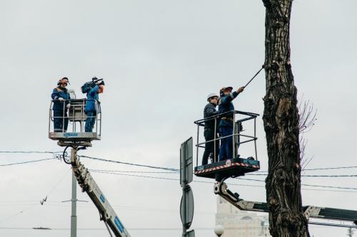4.03.2020_Обрезка деревьев Кутузовский проспект_034
